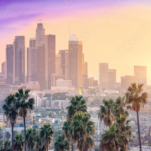 Amazing sunset view with palm tree and downtown Los Angeles. California, USA Wall mural
