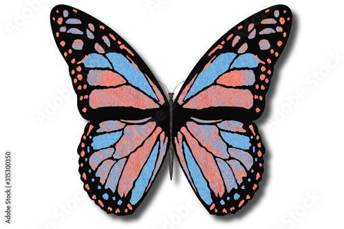 Farfalla colorata vola con le ali aperte su sfondo bianco.. Canvas Print