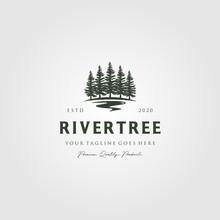 Evergreen Pine Tree Logo Vinta...