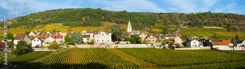 View of famous vineyards near Saint-Aubin