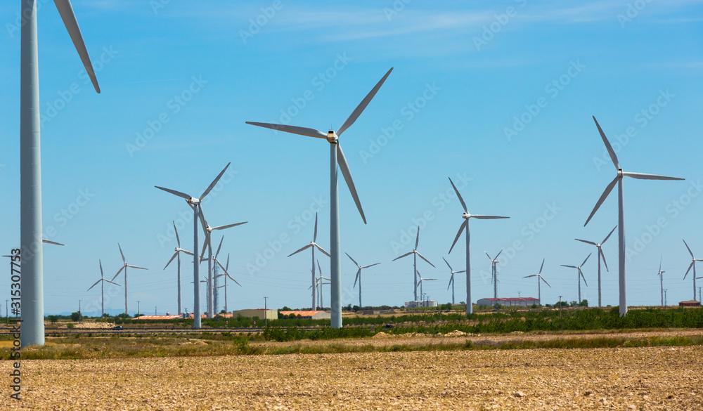 Fototapeta Large wind power plants