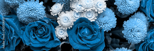 Bouquet of roses and chrysanthemums close up. Beautiful flower background. Blue floral backdrop. Panoramic banner. - 315308937