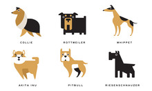 Breeds Of Dogs Collection, Col...