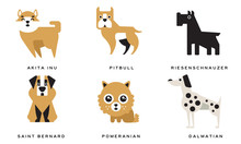 Breeds Of Dogs Collection, Aki...
