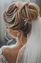 Wedding Hairstyle As A Work Of Art 2478.