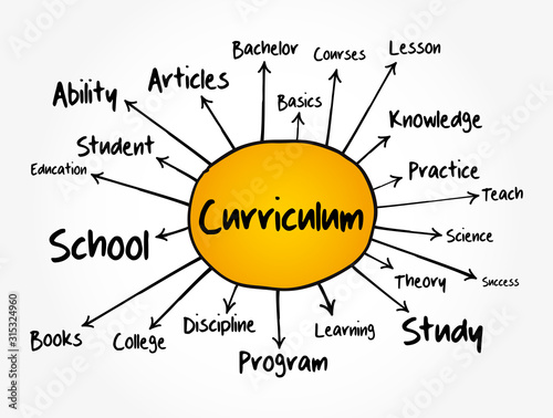 Curriculum mind map flowchart, education concept for presentations and reports Wallpaper Mural