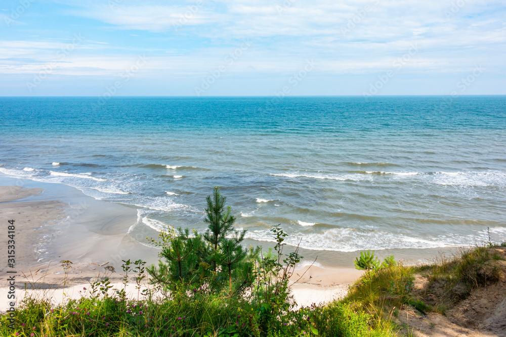 Fototapeta Morze Bałtyckie plaża rośliny