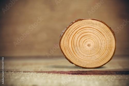 Round old wood slice on desk