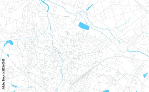 Fotografia, Obraz Rybnik, Poland bright vector map