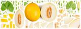 Yellow Sugar Melon Collection Abstract