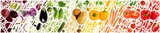 Vegetable Multicolor Collection Abstract