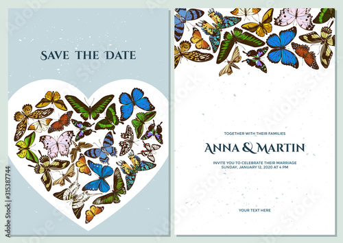 Wedding invitation card with colored morpho menelaus, graphium androcles, morpho Tablou Canvas