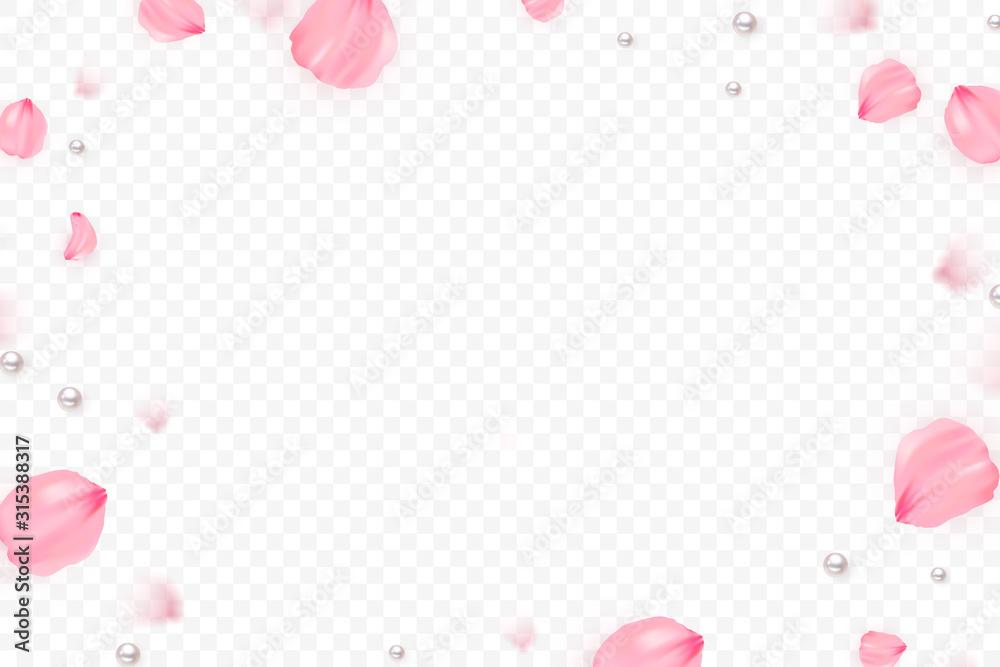 Fototapeta Pink sakura falling petals vector