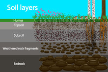 Soil Layers.Diagram For Layer ...