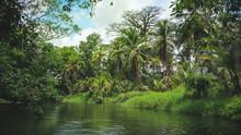 A Beautiful Calm River Landsca...