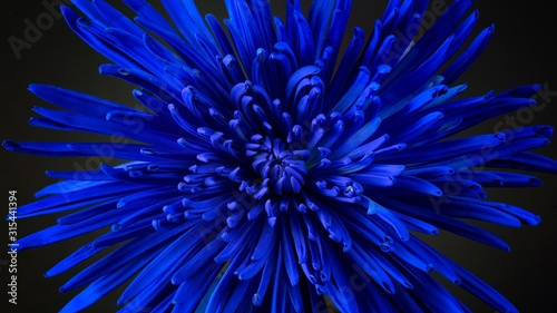 abstract blue background Wallpaper Mural