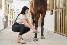 Beautiful Dark Haired Girl Bandaging Horse Legs