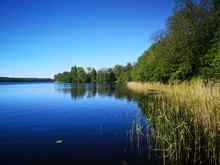 Summer Bank Of A River Or Lake...