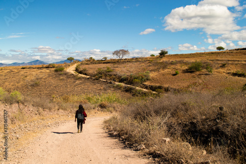 caminata en el desierto Wallpaper Mural