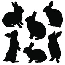 Rabbit Silhouette Set. Vector ...
