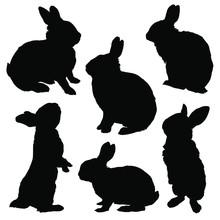 Rabbit Silhouette Set. Vector ...