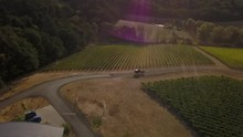 This Is Drone Footed Of A Vineyard With A Horse Drawn Carriage In It Going Around The Winery