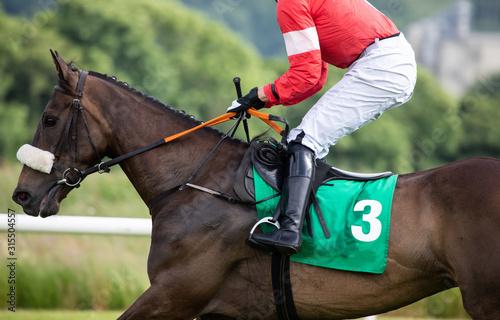 Fotografía  close up on running race horse