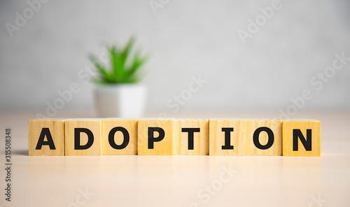Word Adoption written on wooden blocks ob blue background Canvas Print