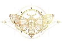 Golden Moth Over Sacred Geomet...