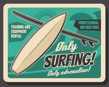 Surfing School, Professional T...