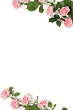 Frame Of Flowers Pink Roses Wi...