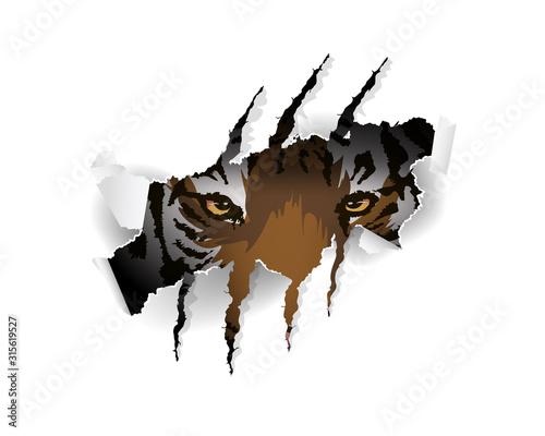 Obraz na plátně Tiger slogan vector