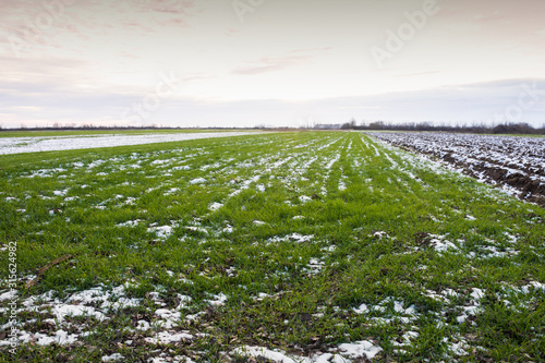 Photo Winter ploughed field under blue sky