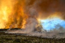 Fynbos Wildfire