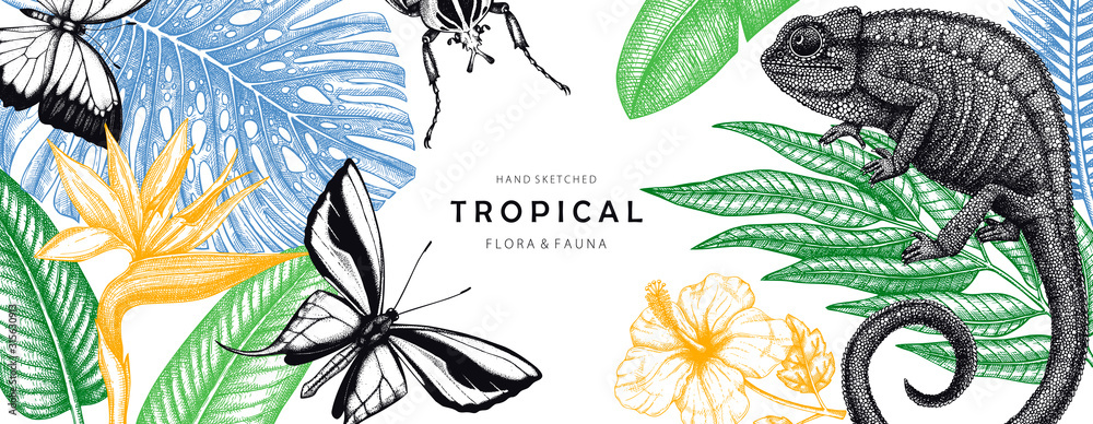 Fototapeta Tropical banner design. Vector frame with hand drawn tropical plants, exotic flowers, palm leaves, insects and chameleon. Vintage wildlife background. Summer template with tropical plants and animals.