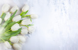 Fototapeta Tulipany - Beautiful white tulips flowers for holiday.