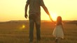 child picks flowers in meadow with his father. Little daughter walks with dad in meadow holding hands. child holds father s hand. family walks in evening out of town. Dad and baby are resting in park.