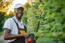 Portrait Of African Gardener Standing Near Decorative Hedge