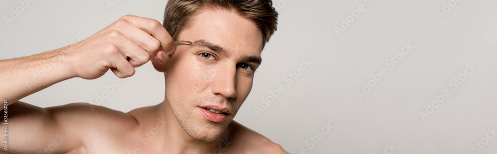 Fototapeta sexy man with bare torso pinching brows with tweezers isolated on grey, panoramic shot