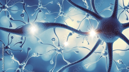 Photo Brain.
