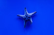 canvas print picture - starfish swimming under water in aquarium with blue lighting