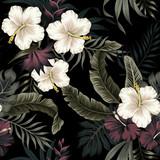Tropikalny rocznika ciemny, biały kwiat hibiskusa, liście palmowe kwiatowy wzór czarne tło. Tapeta egzotycznej dżungli. - 315683988
