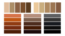 Seth Palette Of Shades Of Hair Color. Hair Color Tones, Palette For Coloring.