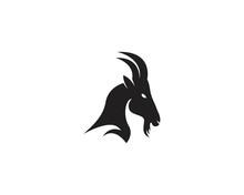 Goat Head Logo Vector Illustra...