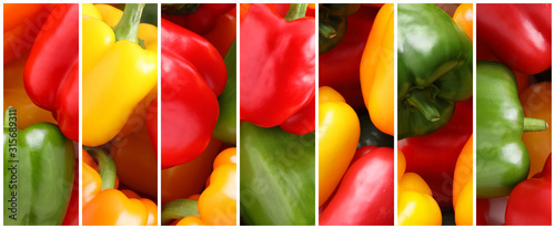 Obraz na plátně  Collage with ripe bell peppers, closeup. Banner design