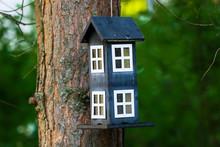 Birdhouse Hanging From Pine Tree In Finnish Summer Evening