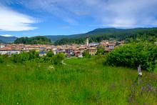 Italy, Trentino, Fondo, Green ...