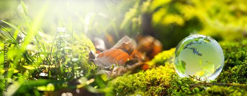 Szklana kula ziemska Europe i Africa na zielonym lasowym tle