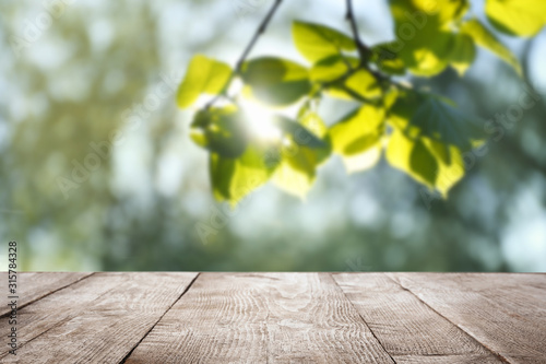 Empty wooden surface against blurred green background. Sunny morning