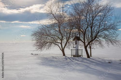 Slovakia - The little in winter ladscape near Sebechleby village. Wallpaper Mural
